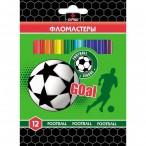 Фломастеры 12цв Хатбер BK Football карт.уп., европодвес