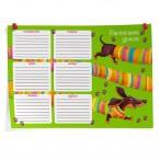 Расписание уроков A4 Феникс Длинная такса картон, выборочный уф-лак
