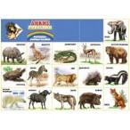 Плакат Миленд А2 Дикие животные
