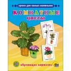 Набор карточек Проф-Пресс Комнатные цветы 8л., 220х170