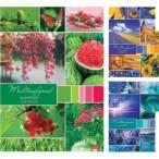Тетрадь А4 96л. Хатбер Разноцветный мир скоба